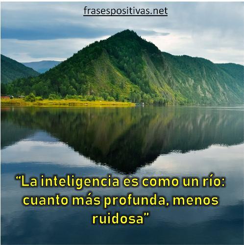 reflexiones sobre inteligencia